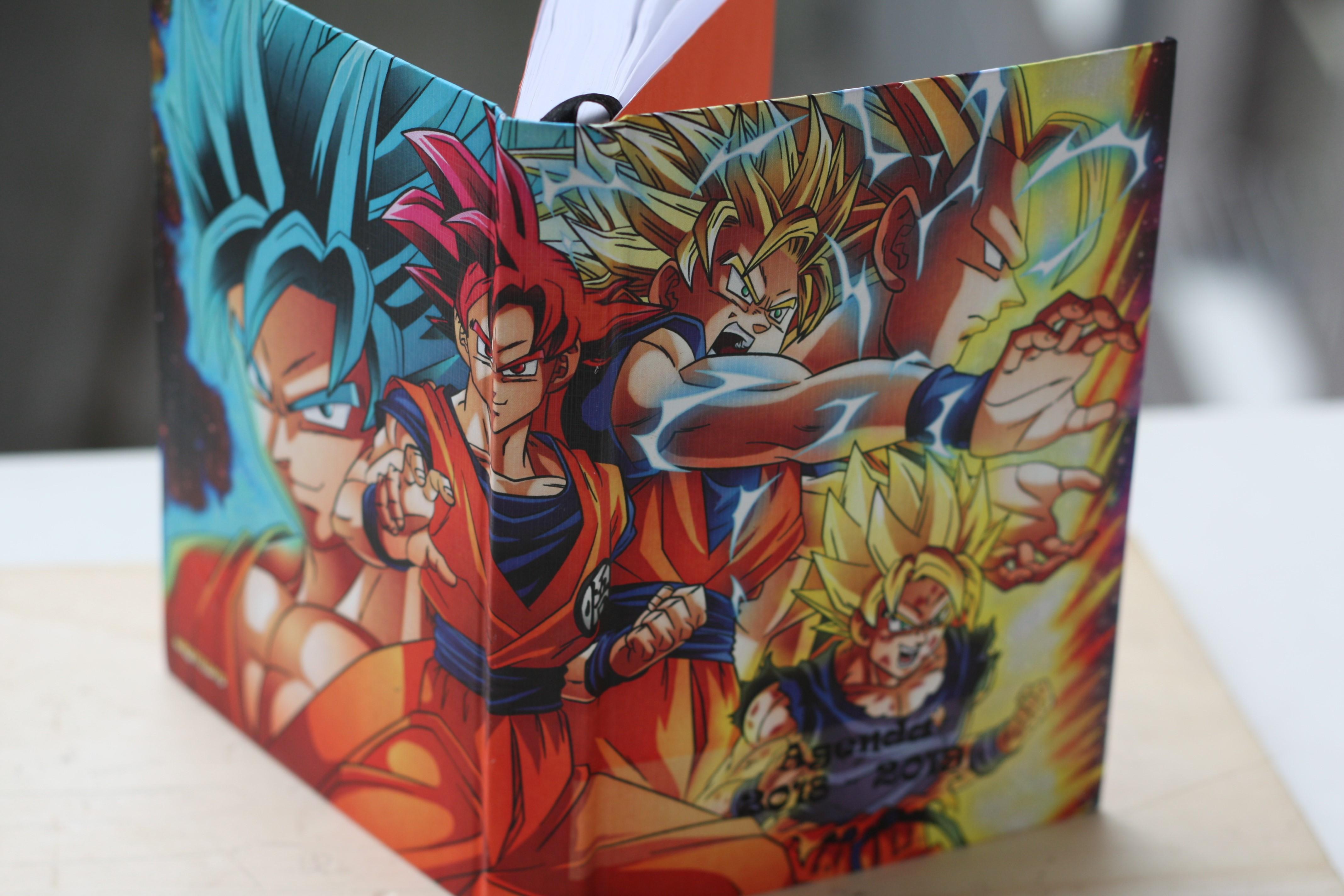 Agenda scolaire Dragon Ball