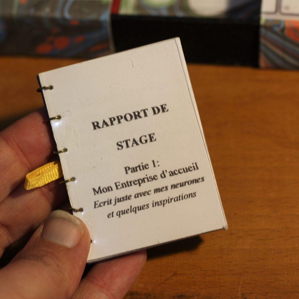 Plagiat Rapport de Stage fictif